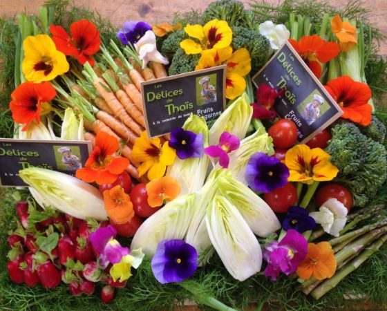 Plateau mini-légumes